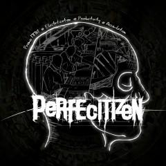 Perfecitizen - Promo MMXI