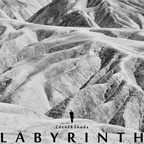 The Faint Smile - Labyrinth