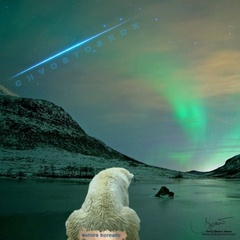 Chvostoskok - Aurora Borealis