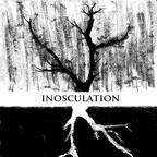 Inosculation - OdrazStromu