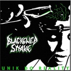 Blackened Snake - Únik do Reality