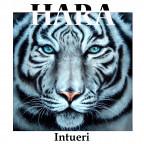 Intueri - Hara