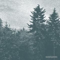 Forest - Hardangervidda