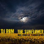DJ RBM - The Sunflower