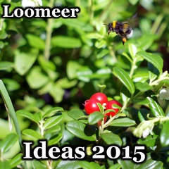 Loomeer - Ideas 2015