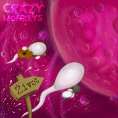 Crazy Monkeys - Život